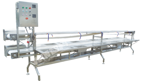 XBF-828双层皮带式鱼类加工线Double - layer belt type fish processing line